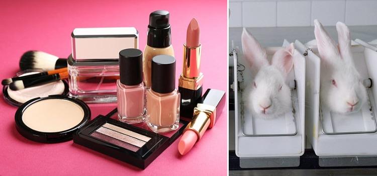marcas de maquillaje que no testen en animales